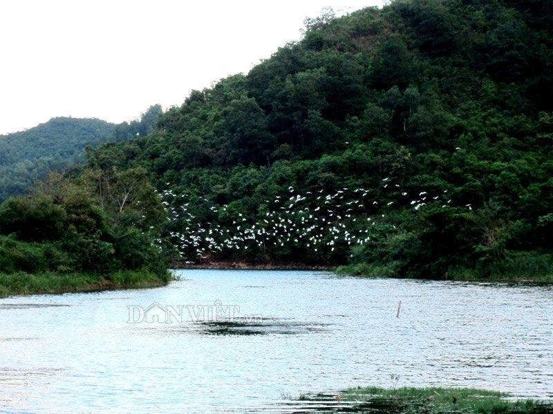 song-dakrong-huyen-thoai-15