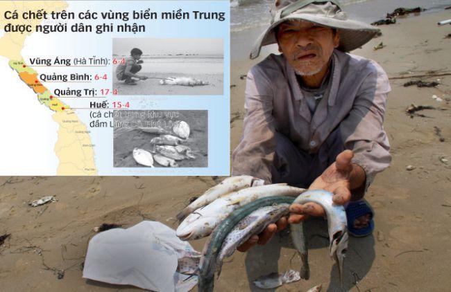 Cá chết, biết kêu ai?